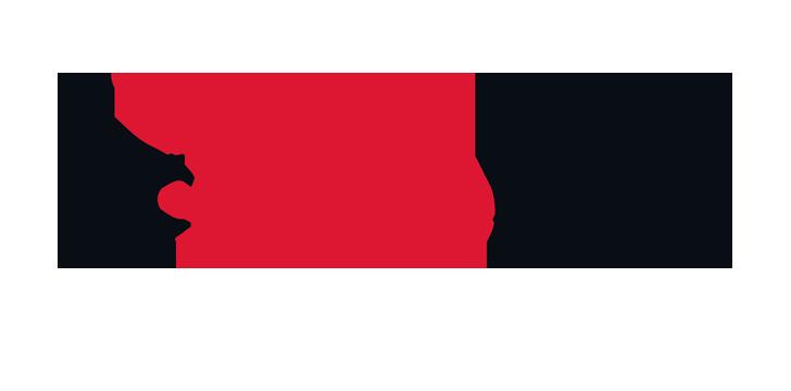 FIRE EYE breach